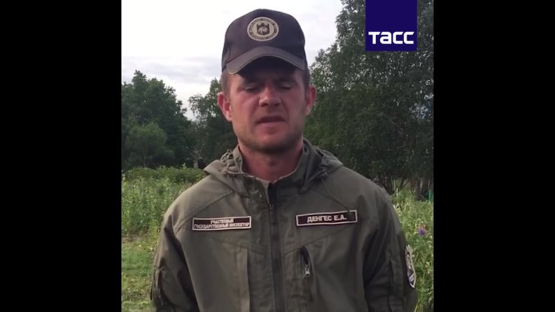 Комментарий госинспектора ФГБУ Кроноцкий государственный заповедник по факту крушения вертолета Ми 8