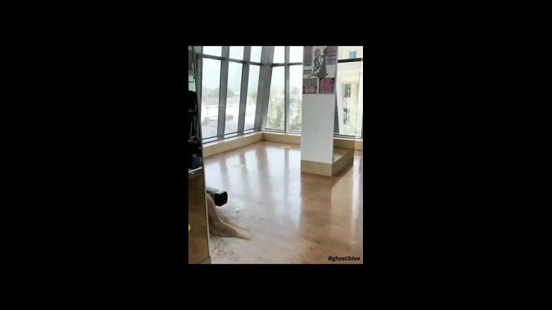 Видео от Детский лекторий А Толмачёва