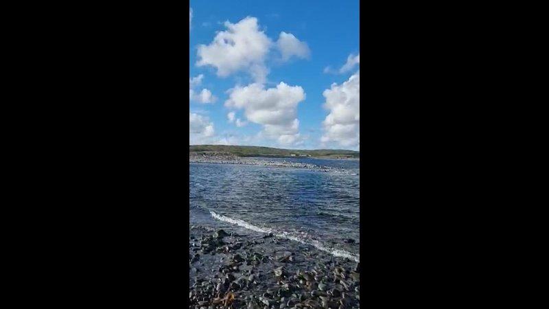 Видео от Рыбалка в Новосибирске