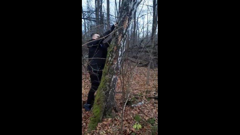 Видео от Дружеская обстановка