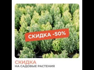 Скидка на садовые растения.mp4