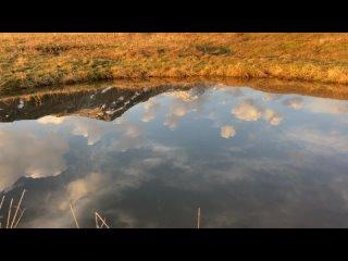 Video by Yaroslav Tarasov
