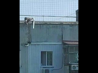 В Новороссийске мужчина спас кота с фасада многоэтажки с помощью ведра и шланга.