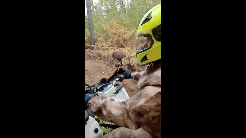 Видео от Натальи Мешковой