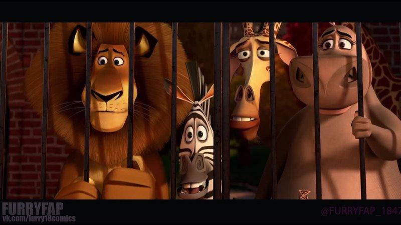 Мадагаскар все 3 фильма HD Пингвины из мадагаскара