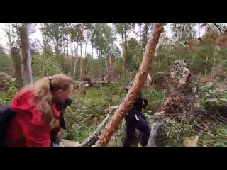Video by Sergey Novopashin