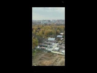 Деревьев в Наташинском парке становится все меньше...