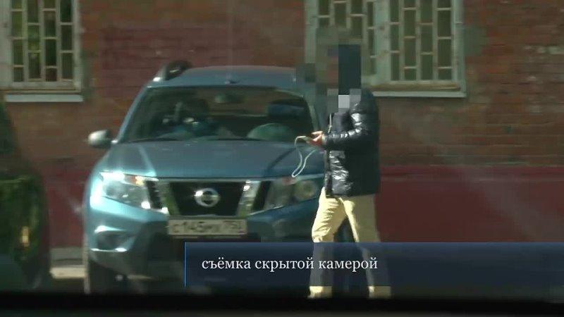 Видео от ПЧЁЛКИ