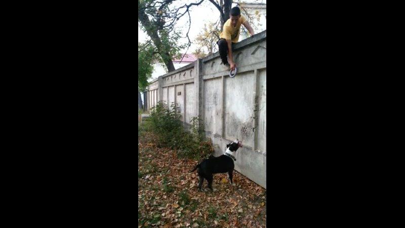Видео от Розы Муталовой