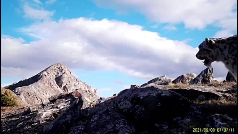 Видео от Национальный парк Тункинский