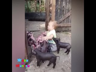 Весело малышу))