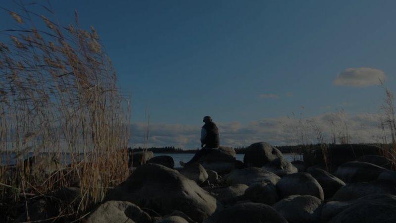 Видео от Дмитрия Красненко