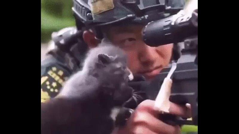 Видео от Котики огонь