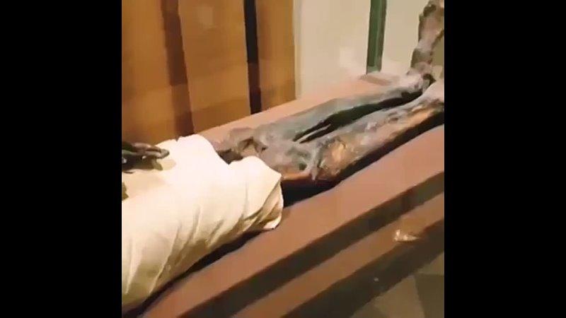 Pharaoh's body saved as in Quran