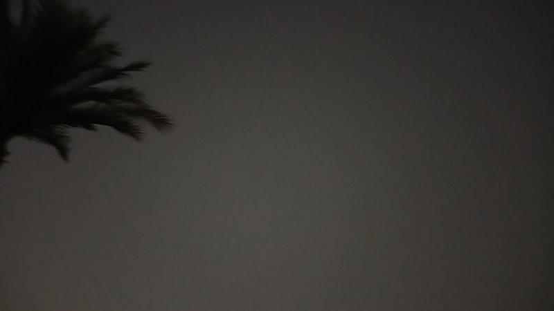 пляж отеля Grand Hotel Sharm летучие мыши