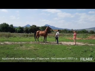 Video_20210919123413594_by_Filmix.mp4