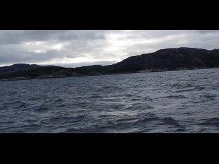 Видео от ЛОЦМАН  все для подводной охоты, дайвинга Ижевск