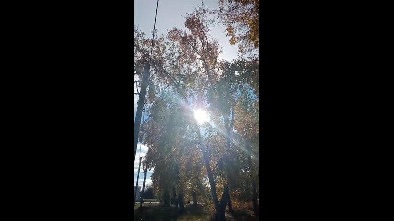 Видео от Галины Мостовихиной