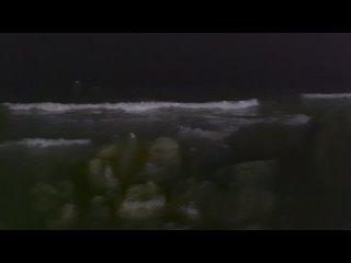 Видео от Александра Маринченко