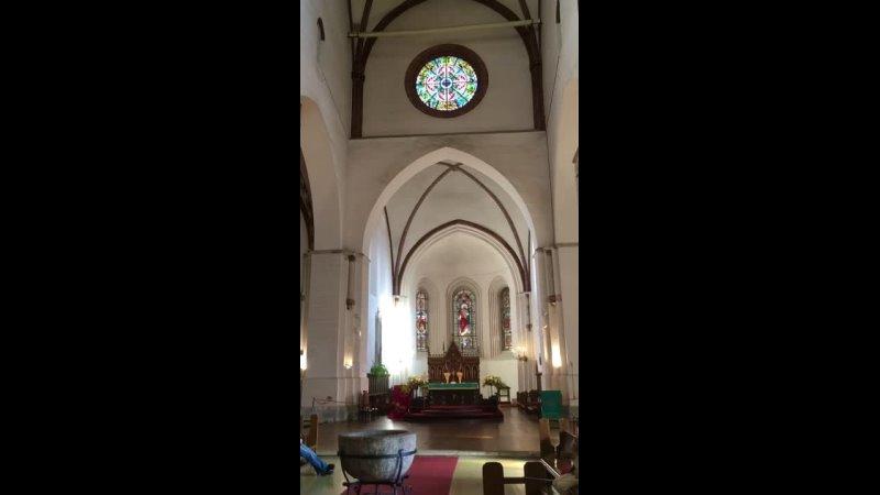 Видео от Елены Петровой