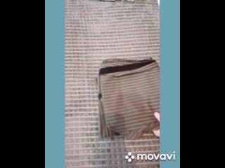MovaviClips_Video_43.mp4