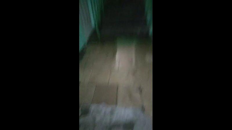 потоп в Ростове
