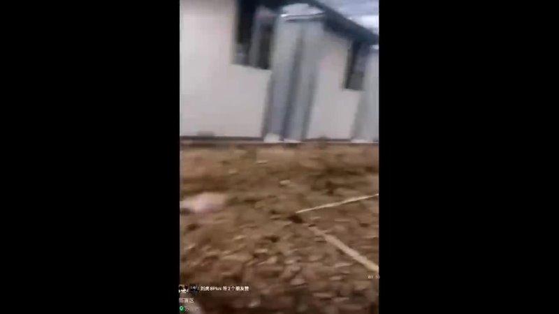 Видео от Alexandru Coțarcă