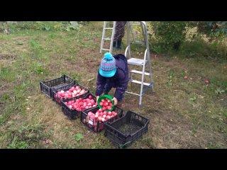 Відео від Андрея Дудкина