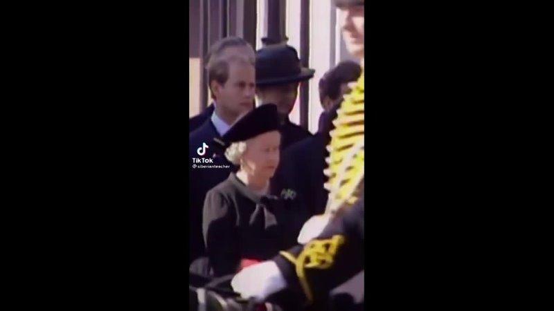 Видео от Greenwich английский и немецкий языки в Казани