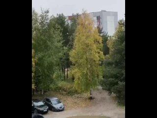Первый снег сегодня утром выпал в Сургуте ❄️...