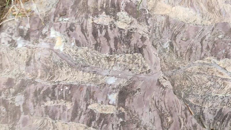 Видео от Александра Попова