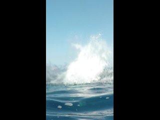 Видео от Дэна Субботина