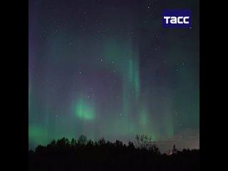 Северное сияние запечатлели в небе над Мурманскои областью