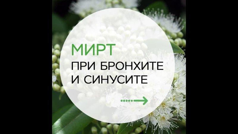 Видео от VITAUCT российский производитель фитокомплексов