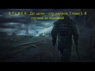 Video by Arseny Vinogradov