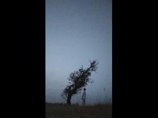 Видео от Елены Котельниковой