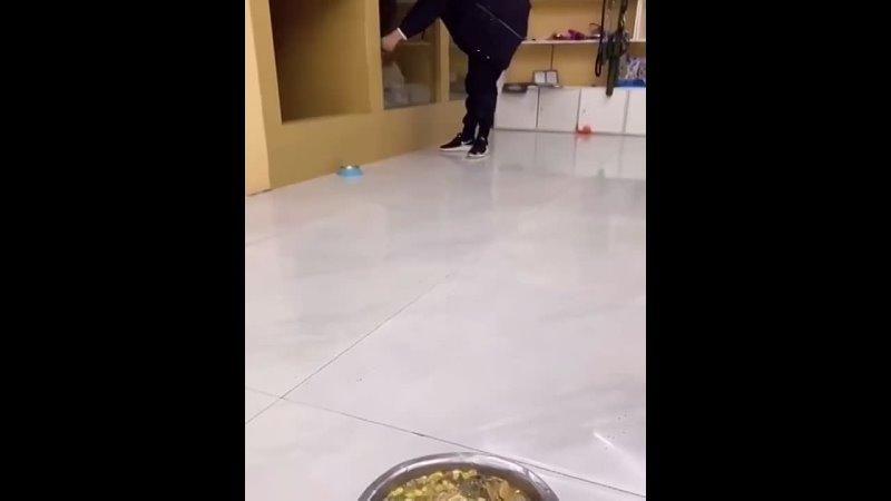 Видео от Жеваный Крот