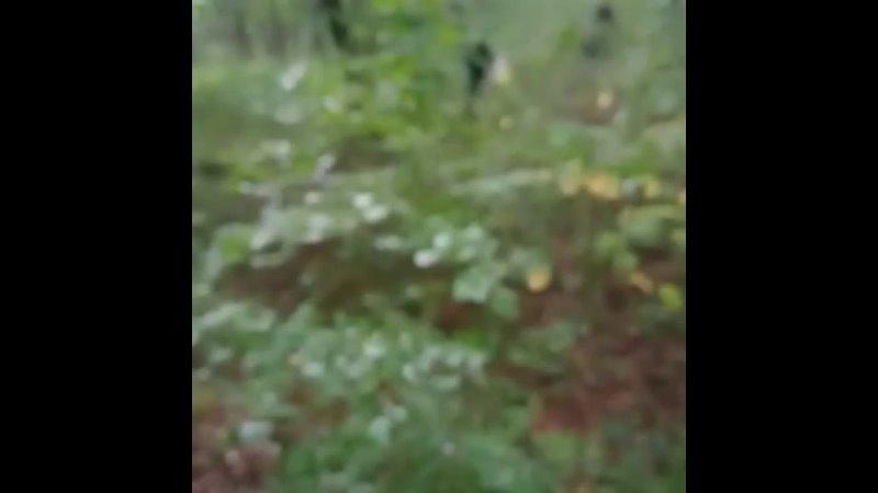 Видео от Кубань СПАС