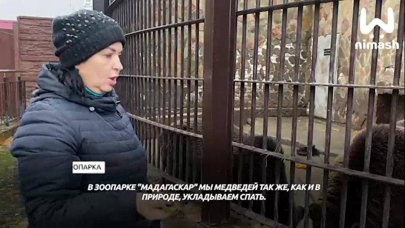 Видео от Афиша Нашего Города Нижний Новгород