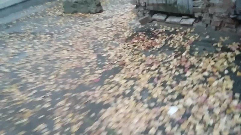 Видео от Олега Рымаръ