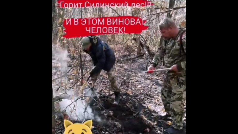Пожар в Силинском лесу в Комсомольске не удается потушить водой ‼️🔥