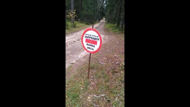 Видео от Пищепром LIFE