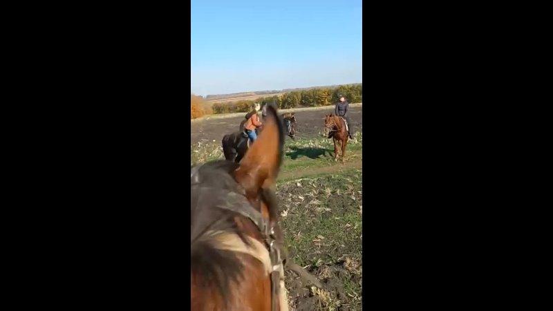 Видео от Татьяны Васильевой