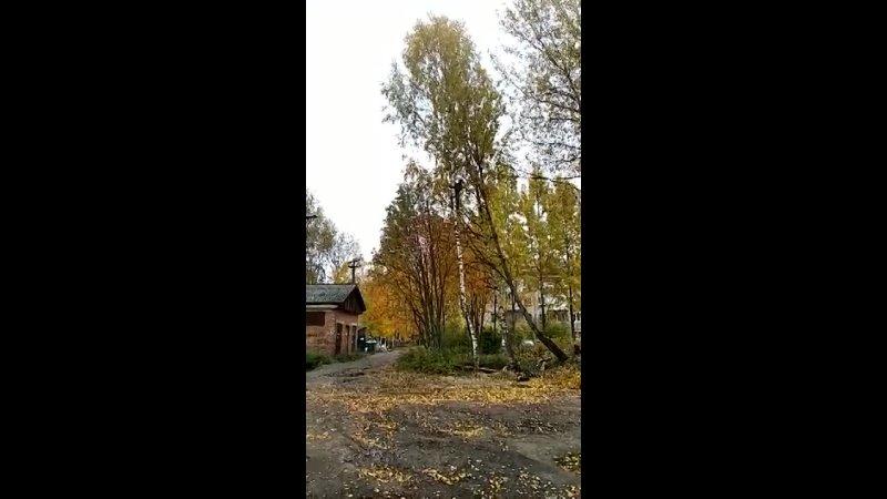 Видео от Двое из ларца г Котлас