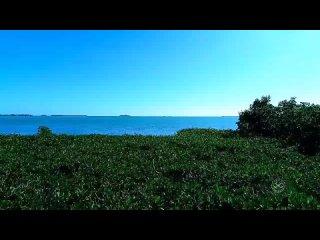 Ки-Уэст (Key-West). Флорида. .mp4