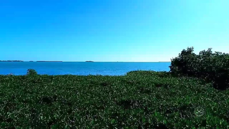 Ки Уэст Key West Флорида mp4