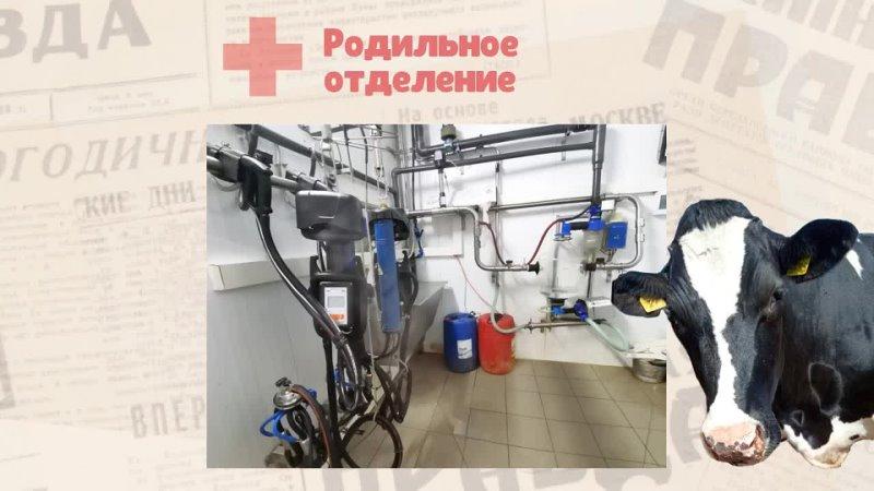 Видео от Дашковка