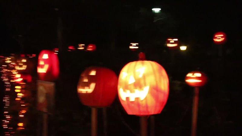 Говорящие тыквы в японском парке ночью прогулка не для слабонервных