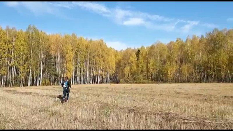 Видео от Марии Шеиной