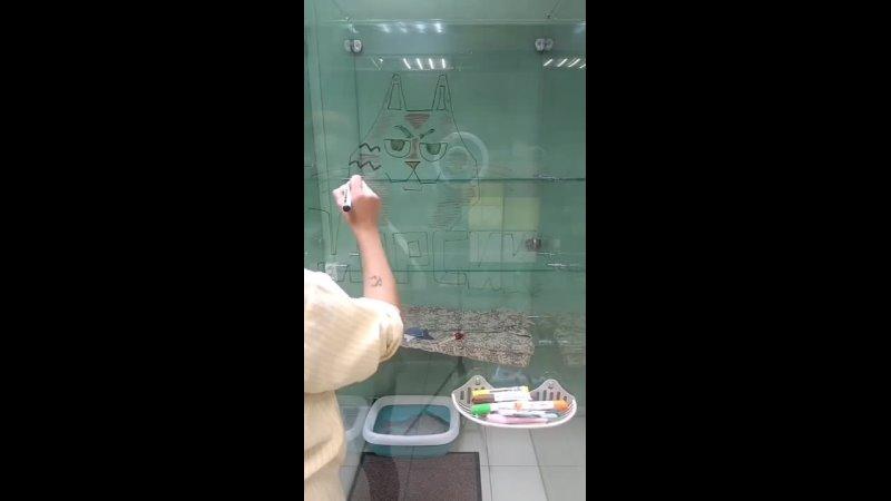 Оформили номер для Марсика котического гиганта ❤️ котельбудни